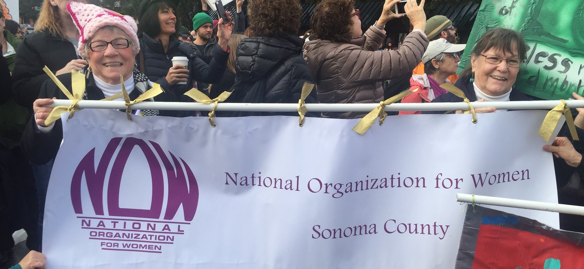 NOW Sonoma Chapter marching at Women's March January 2017